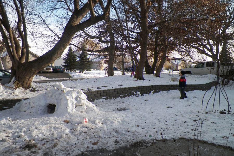 Front yard fun