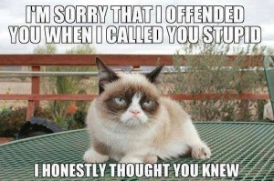 Where I got the saying from... Grumpy Cat
