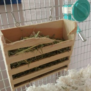 We had an epic battle over hay boxes. We put one in and she would destroy it... until Ken built her a solid little box.