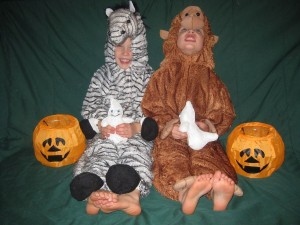 Our Very Own Zebra (Zander) and Monkey